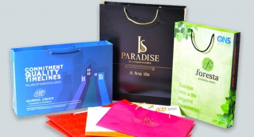 Carry Bags - Paper Bags Printing